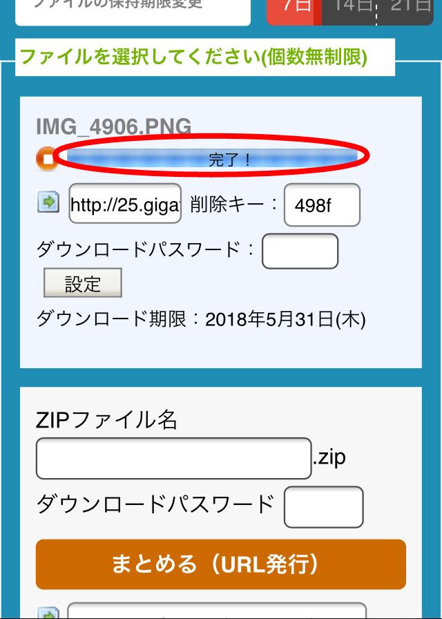 IMG_4907-2